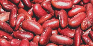 Beans Close Up Colors 1313643